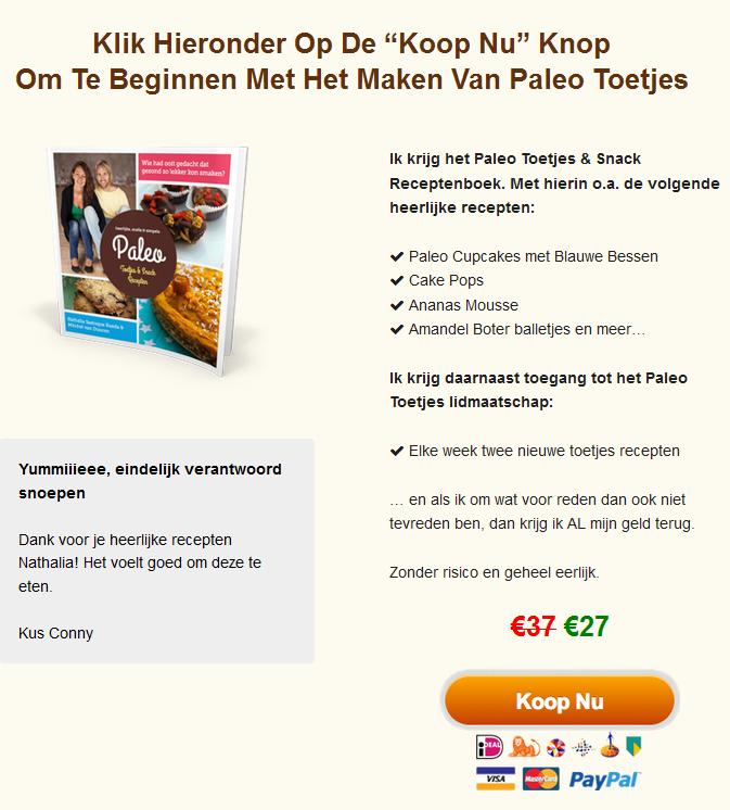 Paleo snacks receptenboek kopen